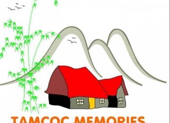 LẮP ĐẶT THIẾT BỊ BỂ BƠI HOMESTAY TAMCOC MEMORIES.